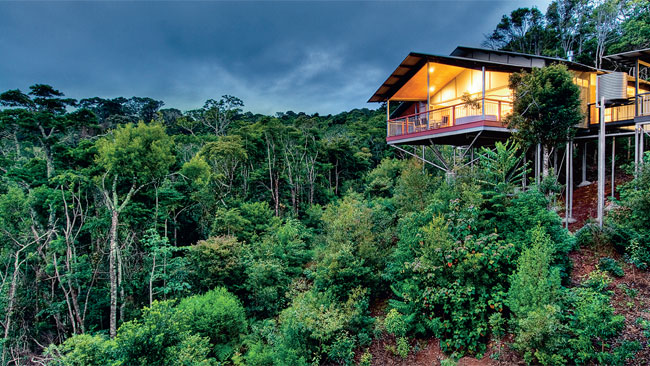 569386-o-amp-039-reilly-amp-039-s-rainforest-retreat