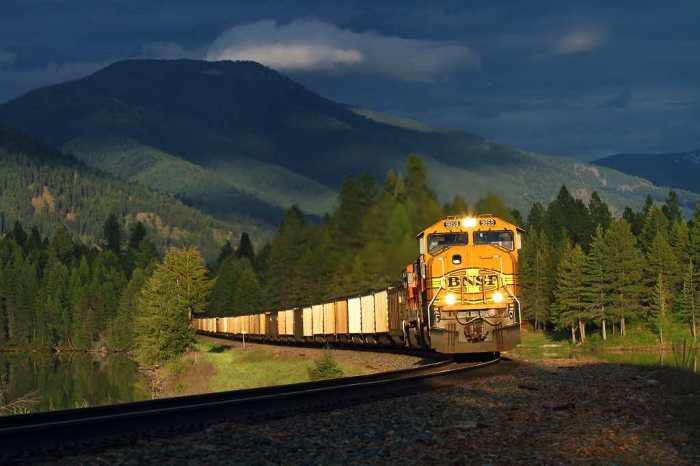 amazing-trains-nature-4