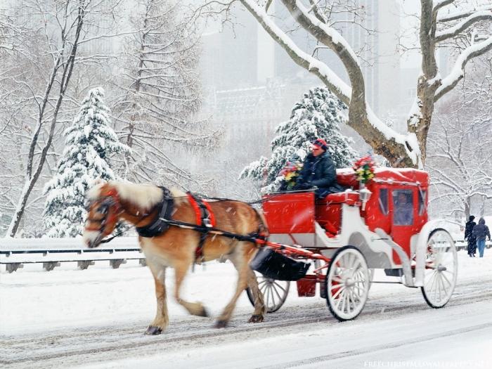 Christmas-Hansom-Cab-Central-Park-New-York1024-51282