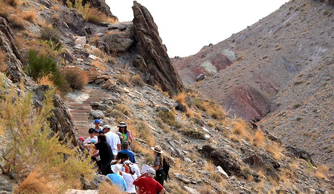 Fossil-Discovery-Trail-Hike
