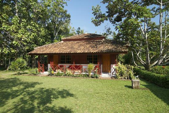 satwa-elephant-eco-lodge