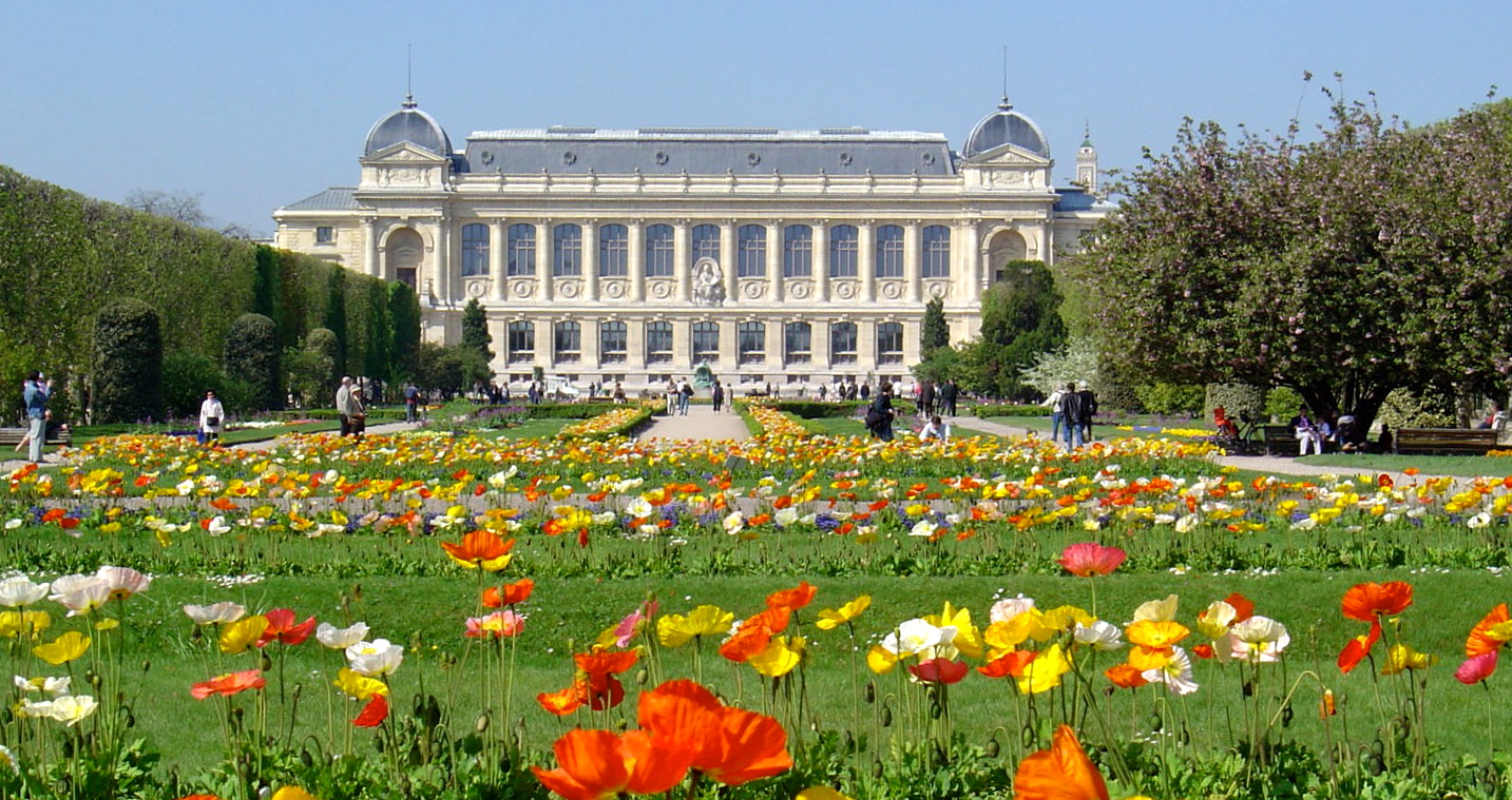 Great european museums for for Paris jardin plantes